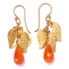 Leafy Sea Dragon Orange